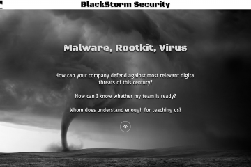 BlackStorm Security